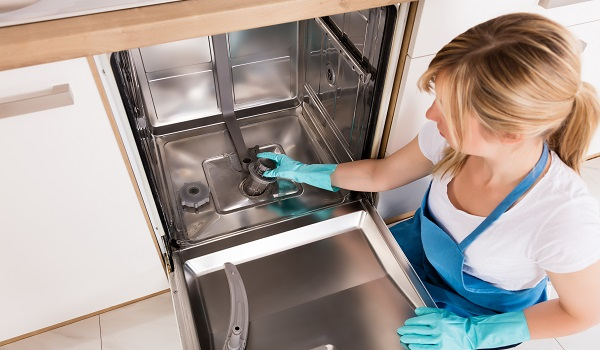 how to clean an electrolulx dishwasher filter